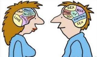 Чем женский мозг отличается от мужского